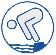 Deutscher Jugendschwimmpass Webabzeichen Silber EASY ON NEU!!!