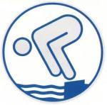 Deutscher Jugendschwimmpass Abzeichen Silber EASY ON NEU!!!